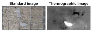 standard vs. thermographic video - home cage