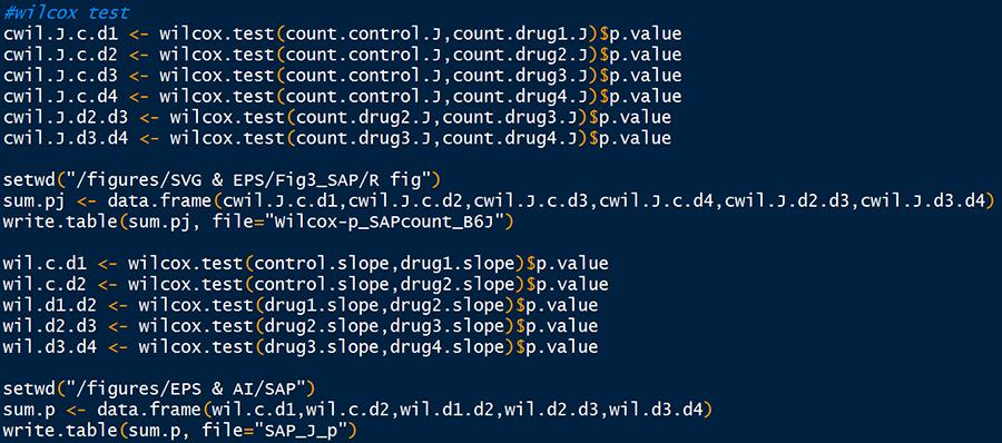 R script example